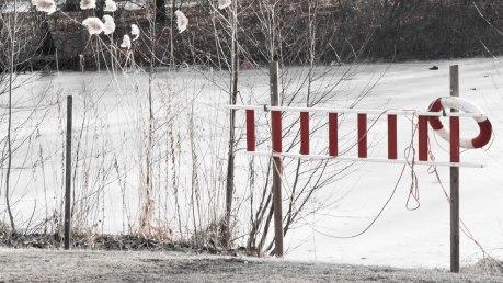 fn_20130303_Tiergarten_022_web