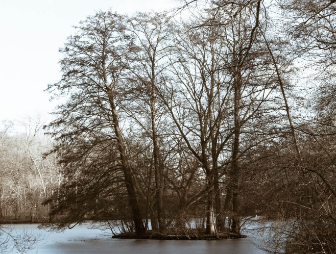 fn_20130303_Tiergarten_023_LM_web