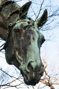 fn_20130303_Tiergarten_034_web