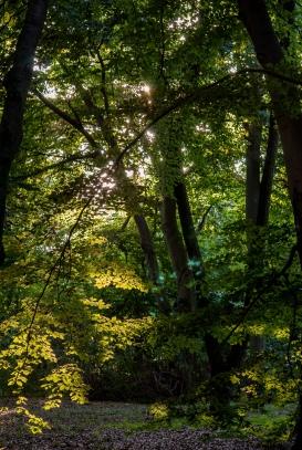 fn_20130825_tierpark_1371_web