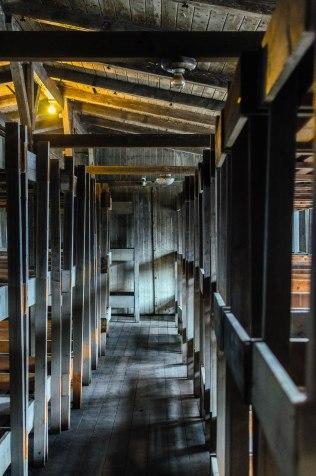 20140202_Sachsenhausen_085_web