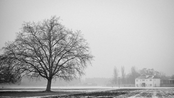20140202_Sachsenhausen_257_web