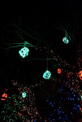 31-fn_20101223_festival_lights_018