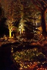 34-fn_20101223_festival_lights_038