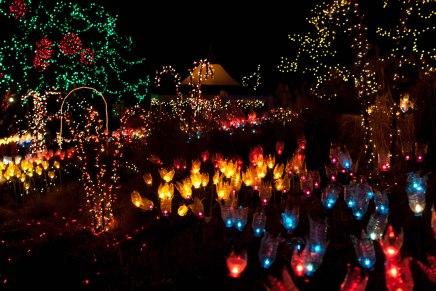 38-fn_20101223_festival_lights_055