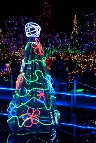 45-fn_20101223_festival_lights_101