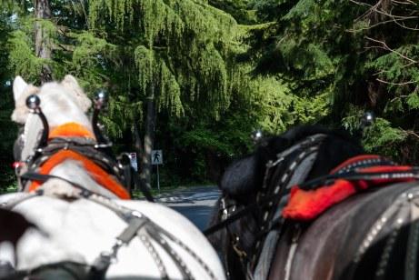 148-fn_20120519_kanada_024_web
