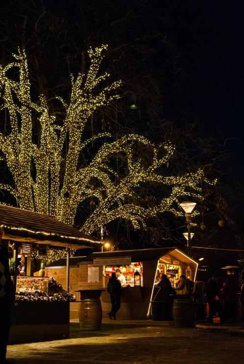 fn_20121219_meran_weihnachtsmarkt_050_web