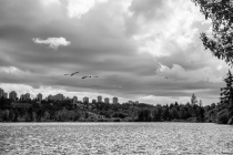 fn_20120523_kanada_061_web