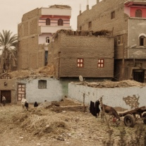20150217_hurghada_0698_web
