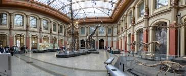 20150426_naturkundemuseum_00005-Pano-Edit_web