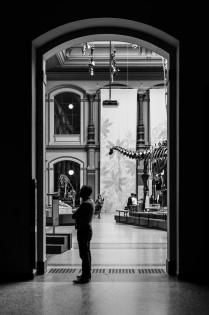 20150426_naturkundemuseum_00050_web