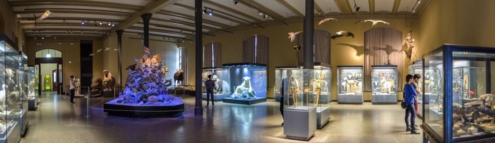 20150426_naturkundemuseum_00321-Pano_web