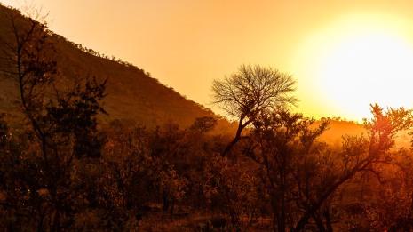 20150624-south-africa-05601-bob