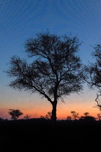 20150624-south-africa-05769-Edit-bob