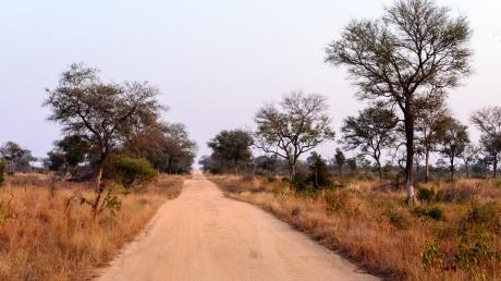 20150623-south-africa-01630-bob
