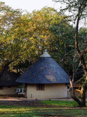 20150623-south-africa-03152-bob