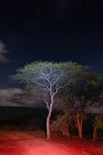 20150625-south-africa-06904-Edit-bob