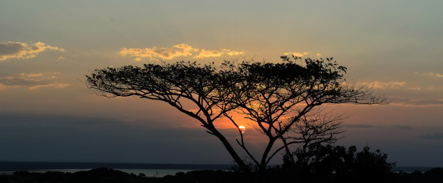20150627-south-africa-03198-Edit-bob