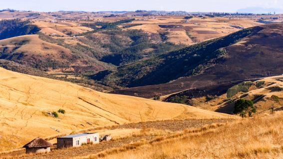 20150630-south-africa-11440-bob