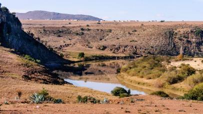 20150630-south-africa-11668-bob