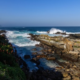20150704-south-africa-15423-bob