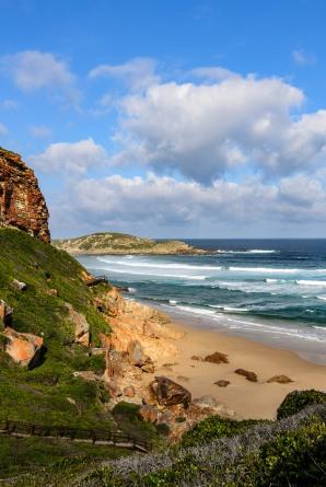 20150705-south-africa-16476-2-bob