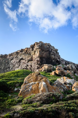 20150705-south-africa-16732-bob