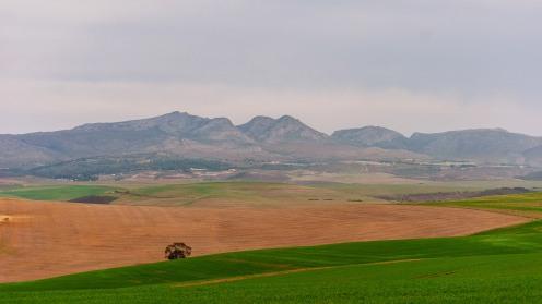20150707-south-africa-17533-bob