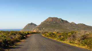20150710-south-africa-18746-2-bob