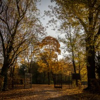 20151027_herbst_00499-HDR-bob