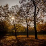 20151027_herbst_00548-HDR-bob