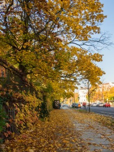 20151027_herbst_00709-HDR-bob
