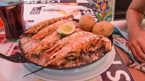 20160808-fuerteventura-04019_web